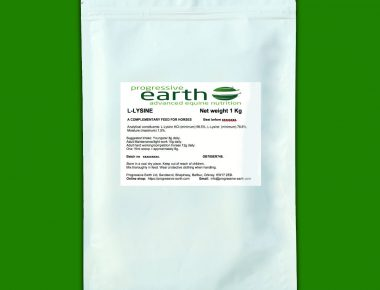Progressive Earth L-Lysine