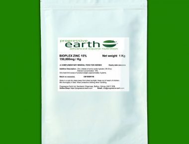 Progressive Earth Bioplex Zinc