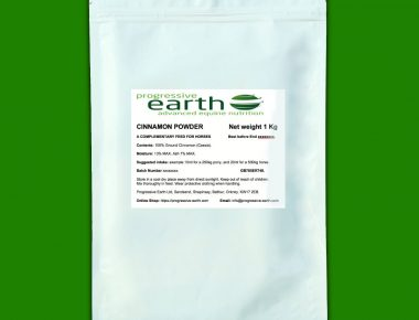 Progressive Earth Cinnamon Powder