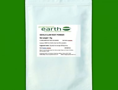Progressive Earth Devil's Claw Root Powder