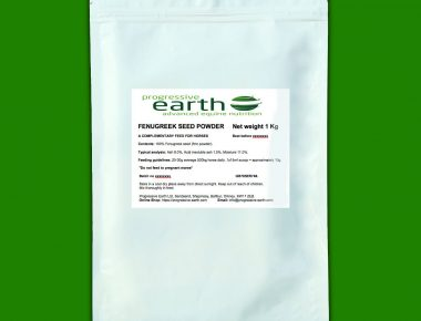 Progressive Earth Fenugreek Seed Powder