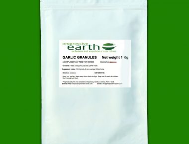 Progressive Earth Garlic Granules