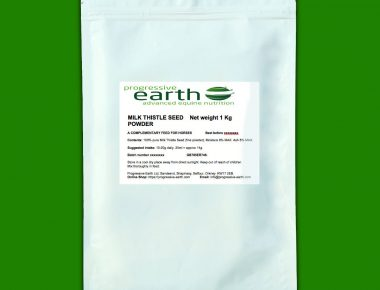 Progressive Earth Milk Thistle Seed Powder